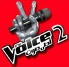 ( 2 ) The Voice