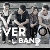 فرقة نيفر داون - Never Down Band